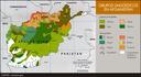 Grupos etnolingüísticos en Afganistán